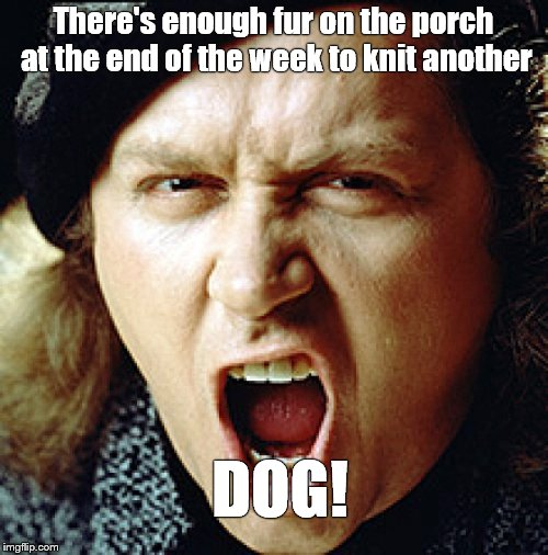 kinison | There's enough fur on the porch at the end of the week to knit another DOG! | image tagged in kinison | made w/ Imgflip meme maker