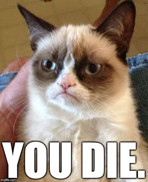 Grumpy Cat Meme | YOU DIE. | image tagged in memes,grumpy cat | made w/ Imgflip meme maker