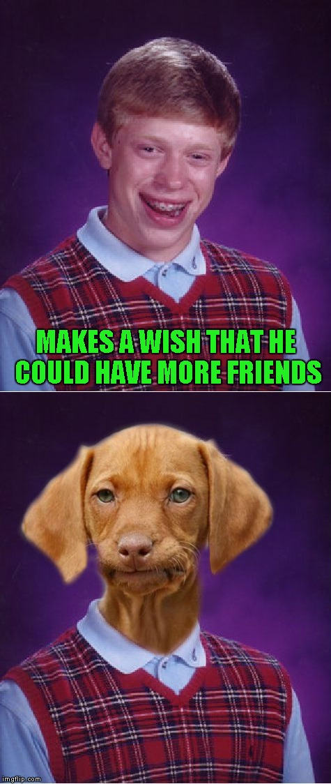 You can't escape the red sweater Brian!!! | MAKES A WISH THAT HE COULD HAVE MORE FRIENDS | image tagged in bad luck brian,memes,funny,bad luck raydog,dogs,animals | made w/ Imgflip meme maker
