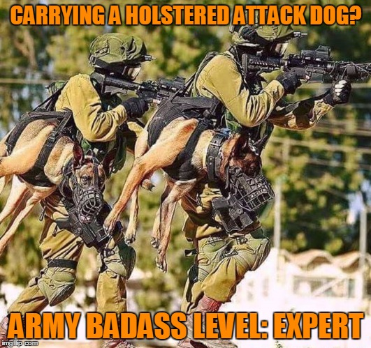 Get 'em boy! | CARRYING A HOLSTERED ATTACK DOG? ARMY BADASS LEVEL: EXPERT | image tagged in army dog,attack dog,german shepherd,animals,dogs,level expert | made w/ Imgflip meme maker