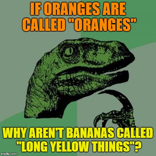 "Philosoraptor Meme | IF ORANGES ARE CALLED ""ORANGES"" WHY AREN'T BANANAS CALLED ""LONG YELLOW THINGS""? 