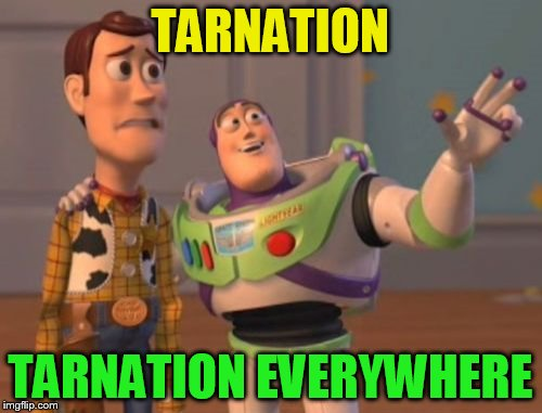 X, X Everywhere Meme | TARNATION TARNATION EVERYWHERE | image tagged in memes,x,x everywhere,x x everywhere | made w/ Imgflip meme maker