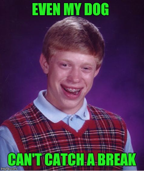Bad Luck Brian Meme | EVEN MY DOG CAN'T CATCH A BREAK | image tagged in memes,bad luck brian | made w/ Imgflip meme maker