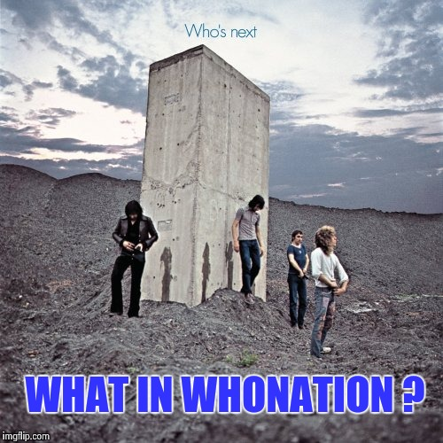 WHAT IN WHONATION ? | image tagged in who's next | made w/ Imgflip meme maker