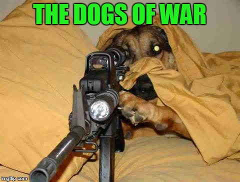 Sniper Dog | THE DOGS OF WAR | image tagged in sniper dog | made w/ Imgflip meme maker
