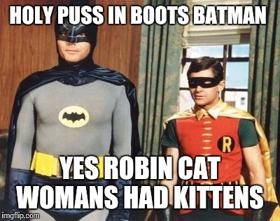 HOLY PUSS IN BOOTS BATMAN YES ROBIN CAT WOMANS HAD KITTENS | made w/ Imgflip meme maker