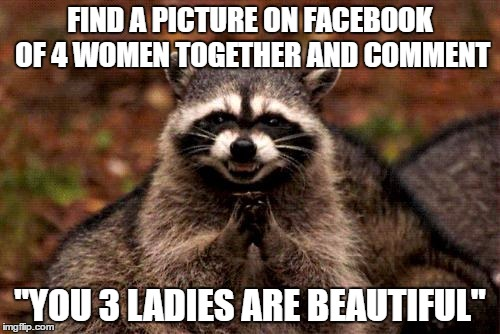 "Evil Plotting Raccoon Meme | FIND A PICTURE ON FACEBOOK OF 4 WOMEN TOGETHER AND COMMENT ""YOU 3 LADIES ARE BEAUTIFUL"" 