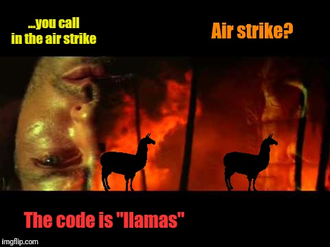 "...you call in the air strike The code is ""llamas"" Air strike? 