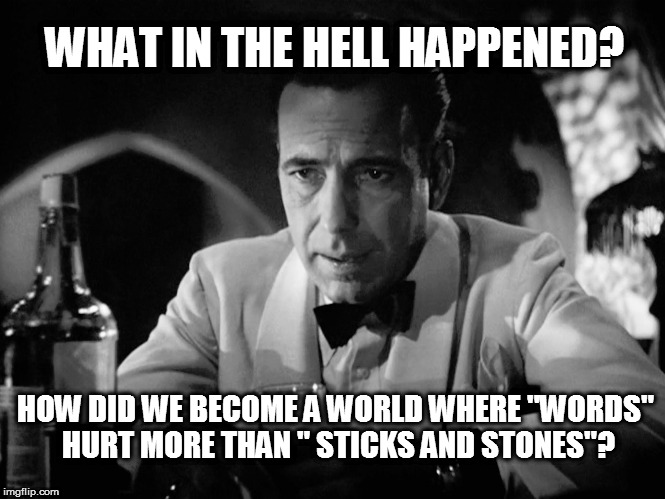 "bogart | WHAT IN THE HELL HAPPENED? HOW DID WE BECOME A WORLD WHERE ""WORDS"" HURT MORE THAN "" STICKS AND STONES""? 