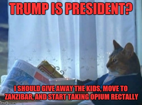 I Should Buy A Boat Cat Meme | TRUMP IS PRESIDENT? I SHOULD GIVE AWAY THE KIDS, MOVE TO ZANZIBAR, AND START TAKING OPIUM RECTALLY | image tagged in memes,i should buy a boat cat | made w/ Imgflip meme maker