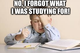 Facepalm studying kid | NO, I FORGOT WHAT I WAS STUDYING FOR! | image tagged in facepalm studying kid | made w/ Imgflip meme maker