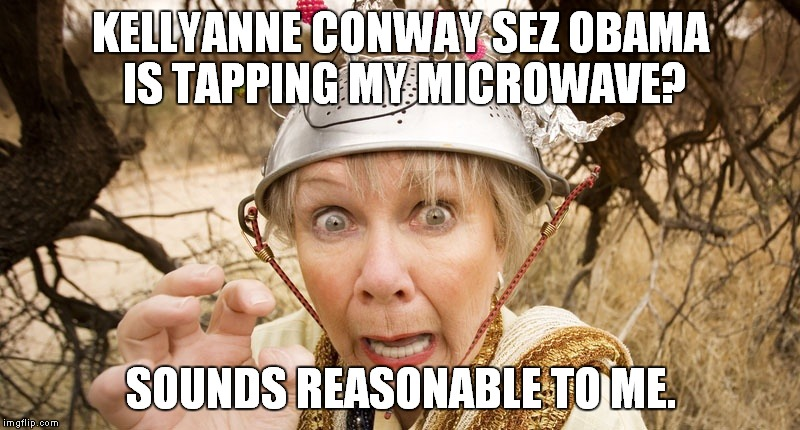 Wiretapping Trump | KELLYANNE CONWAY SEZ OBAMA IS TAPPING MY MICROWAVE? SOUNDS REASONABLE TO ME. | image tagged in wiretapping,trump is an asshole,donald trump is an idiot,kellyanne conway alternative facts | made w/ Imgflip meme maker