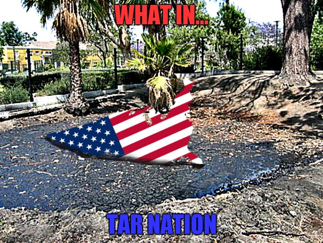 What in tarnation week a santadude event... | WHAT IN... TAR NATION | image tagged in what in tarnation week | made w/ Imgflip meme maker