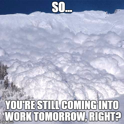 SO... YOU'RE STILL COMING INTO WORK TOMORROW, RIGHT? | image tagged in snowlotsofsnow | made w/ Imgflip meme maker