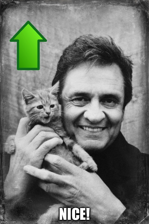 Johnny Cash Cat | NICE! | image tagged in johnny cash cat | made w/ Imgflip meme maker