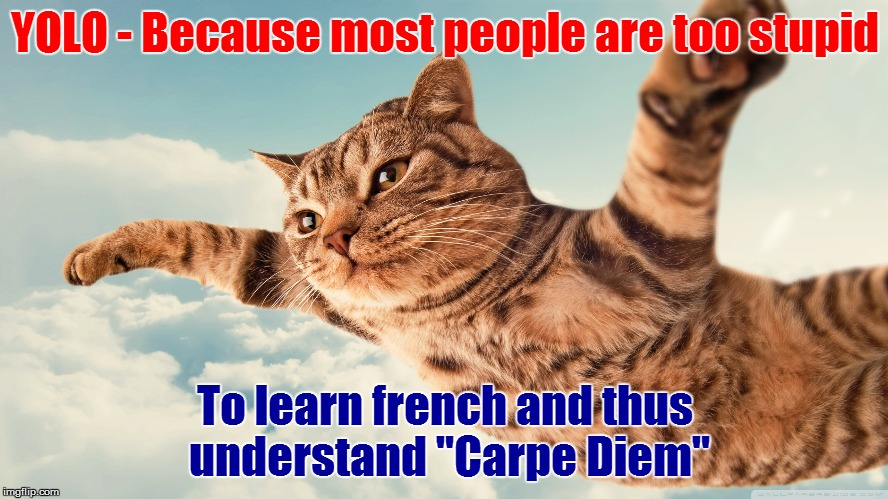 "Either that or spanish, my point still stands | YOLO - Because most people are too stupid To learn french and thus understand ""Carpe Diem"" 