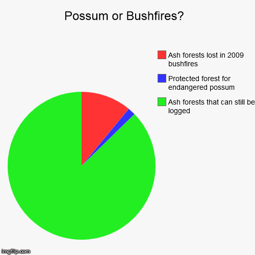 Possum or bushfire to blame?  | Possum or Bushfires?  | Ash forests that can still be logged, Protected forest for endangered possum, Ash forests lost in 2009 bushfires | image tagged in forests,possum,logging,bushfire | made w/ Imgflip chart maker