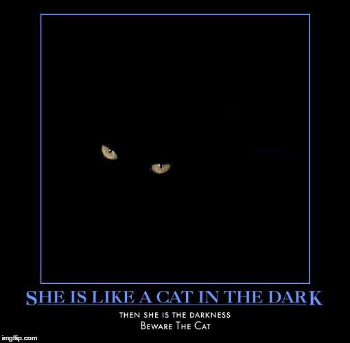 Rhiannon | . | image tagged in meme,for i am the cat,wmp,stevie nicks,fleetwood mac | made w/ Imgflip meme maker