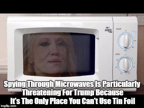 Spying Through Microwaves Is Particularly Threatening For Trump Because It's The Only Place You Can't Use Tin Foil | made w/ Imgflip meme maker