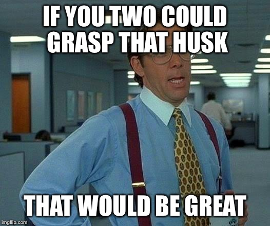 That Would Be Great Meme | IF YOU TWO COULD GRASP THAT HUSK THAT WOULD BE GREAT | image tagged in memes,that would be great | made w/ Imgflip meme maker