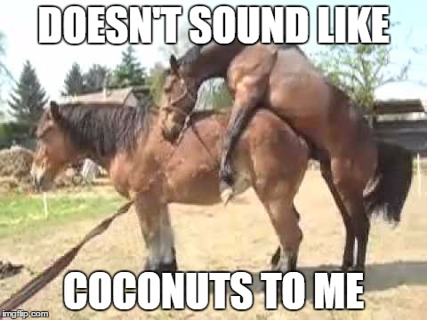 DOESN'T SOUND LIKE COCONUTS TO ME | made w/ Imgflip meme maker