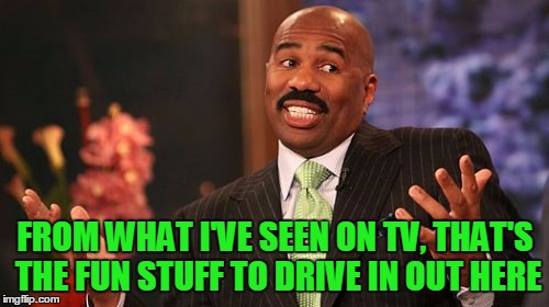 Steve Harvey Meme | FROM WHAT I'VE SEEN ON TV, THAT'S THE FUN STUFF TO DRIVE IN OUT HERE | image tagged in memes,steve harvey | made w/ Imgflip meme maker
