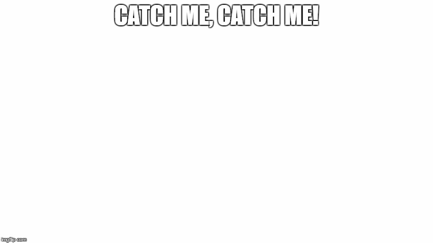 CATCH ME, CATCH ME! | made w/ Imgflip meme maker