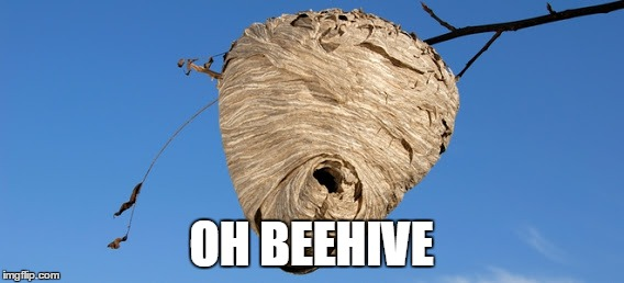 OH BEEHIVE | made w/ Imgflip meme maker