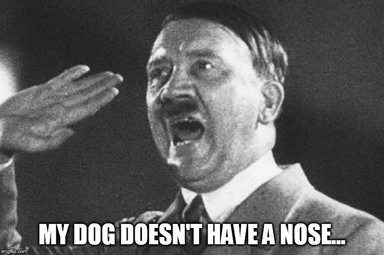 adolf | MY DOG DOESN'T HAVE A NOSE... | image tagged in adolf | made w/ Imgflip meme maker