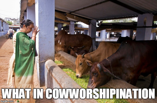 WHAT IN COWWORSHIPINATION | made w/ Imgflip meme maker