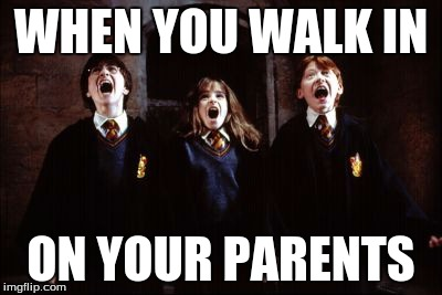 WHEN YOU WALK IN ON YOUR PARENTS | image tagged in when,you,walk,in,on,your | made w/ Imgflip meme maker