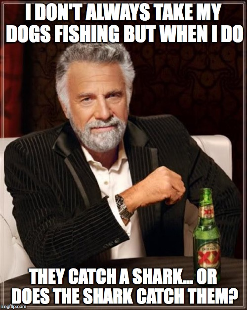 The Most Interesting Man In The World Meme | I DON'T ALWAYS TAKE MY DOGS FISHING BUT WHEN I DO THEY CATCH A SHARK... OR DOES THE SHARK CATCH THEM? | image tagged in memes,the most interesting man in the world | made w/ Imgflip meme maker