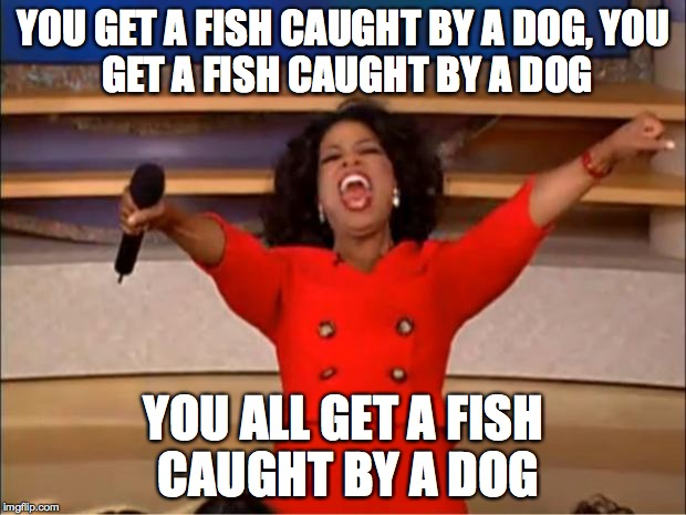 Oprah You Get A Meme | YOU GET A FISH CAUGHT BY A DOG, YOU GET A FISH CAUGHT BY A DOG YOU ALL GET A FISH CAUGHT BY A DOG | image tagged in memes,oprah you get a | made w/ Imgflip meme maker