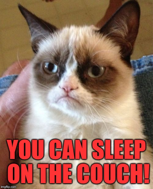 Grumpy Cat Meme | YOU CAN SLEEP ON THE COUCH! | image tagged in memes,grumpy cat | made w/ Imgflip meme maker