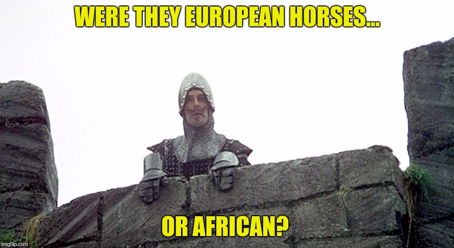 WERE THEY EUROPEAN HORSES... OR AFRICAN? | made w/ Imgflip meme maker