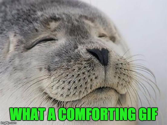 WHAT A COMFORTING GIF | made w/ Imgflip meme maker