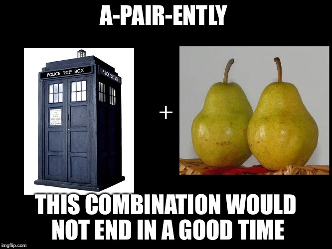 A-PAIR-ENTLY THIS COMBINATION WOULD NOT END IN A GOOD TIME | image tagged in tardispair | made w/ Imgflip meme maker