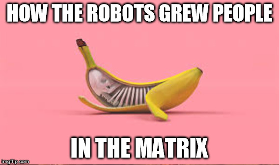 HOW THE ROBOTS GREW PEOPLE IN THE MATRIX | made w/ Imgflip meme maker