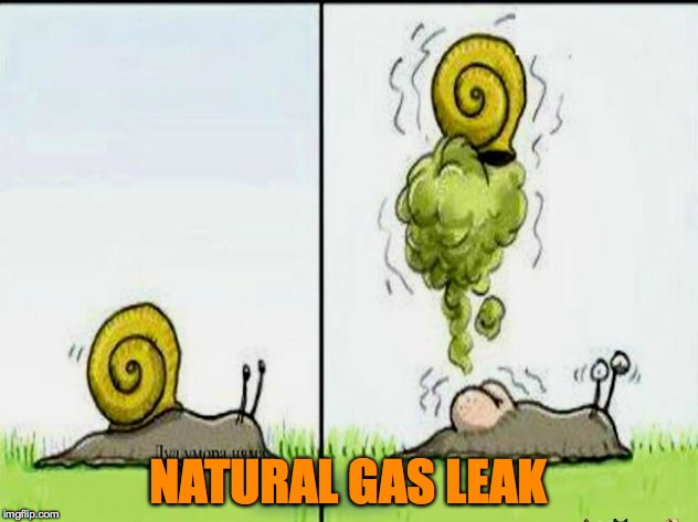 Home Health Hazard | NATURAL GAS LEAK | image tagged in snail fart | made w/ Imgflip meme maker