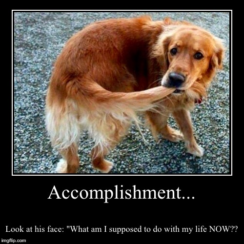 "Accomplishment... | Look at his face: ""What am I supposed to do with my life NOW?? 