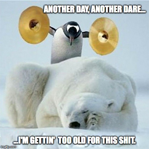 Just Gotta Do It, Tho'! | ANOTHER DAY, ANOTHER DARE... ...I'M GETTIN'  TOO OLD FOR THIS SHIT. | image tagged in too old for this shit | made w/ Imgflip meme maker