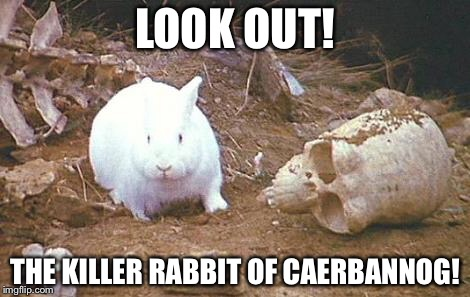 Oh, no! | LOOK OUT! THE KILLER RABBIT OF CAERBANNOG! | image tagged in monty python week,monty python,monty python and the holy grail | made w/ Imgflip meme maker