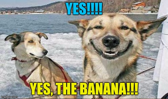 YES!!!! YES, THE BANANA!!! | made w/ Imgflip meme maker