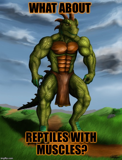 WHAT ABOUT REPTILES WITH MUSCLES? | made w/ Imgflip meme maker