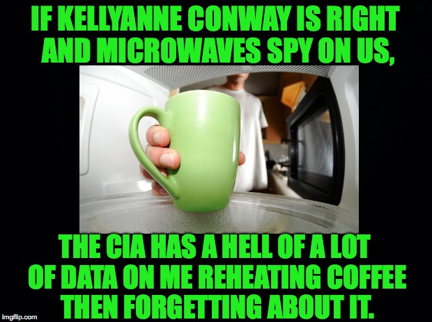 Spys, Spys everywhere |  IF KELLYANNE CONWAY IS RIGHT AND MICROWAVES SPY ON US, THE CIA HAS A HELL OF A LOT OF DATA ON ME REHEATING COFFEE THEN FORGETTING ABOUT IT. | image tagged in conway,microwaves,spying,coffee | made w/ Imgflip meme maker