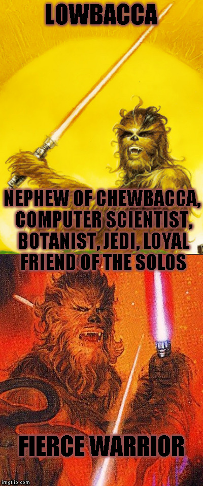 Star Wars Expanded Universe Character Spotlight: Lowbacca | LOWBACCA NEPHEW OF CHEWBACCA, COMPUTER SCIENTIST, BOTANIST, JEDI, LOYAL FRIEND OF THE SOLOS FIERCE WARRIOR | image tagged in memes,star wars,star wars treu canon,legends,star wars kills disney,star wars eu character spotlight | made w/ Imgflip meme maker