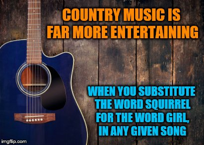 You'll thank me later | COUNTRY MUSIC IS FAR MORE ENTERTAINING WHEN YOU SUBSTITUTE THE WORD SQUIRREL FOR THE WORD GIRL, IN ANY GIVEN SONG | image tagged in country music,funny memes | made w/ Imgflip meme maker