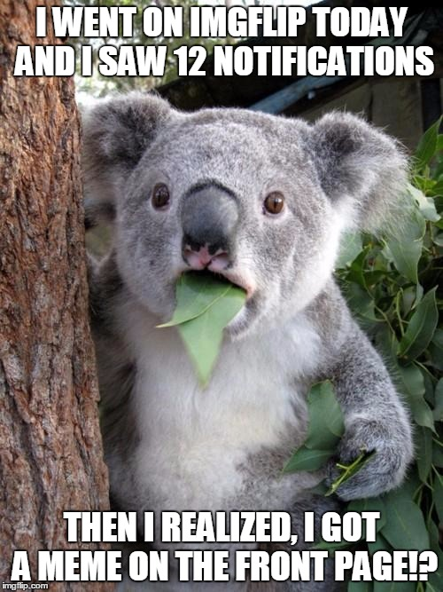 this was my reaction on Imgflip today. | I WENT ON IMGFLIP TODAY AND I SAW 12 NOTIFICATIONS THEN I REALIZED, I GOT A MEME ON THE FRONT PAGE!? | image tagged in memes,surprised koala,front page,imgflip | made w/ Imgflip meme maker