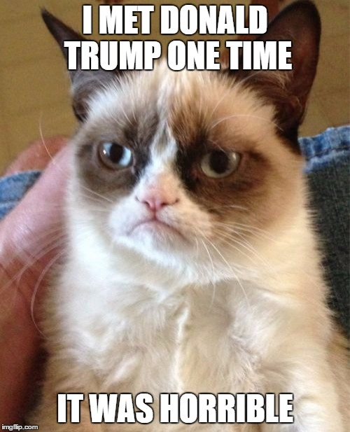 Grumpy Cat Meme | I MET DONALD TRUMP ONE TIME IT WAS HORRIBLE | image tagged in memes,grumpy cat | made w/ Imgflip meme maker