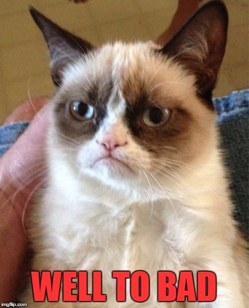 Grumpy Cat Meme | WELL TO BAD | image tagged in memes,grumpy cat | made w/ Imgflip meme maker